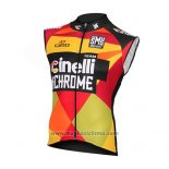 2016 Gilet Antivento Cinelli Giallo